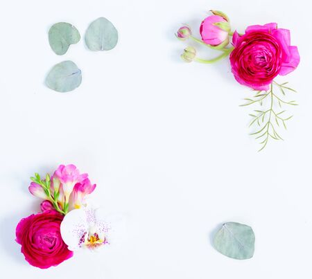Floral composition. Frame of eucaliptus leaves and flowers on white background. Flat lay, top view with copy space Zdjęcie Seryjne