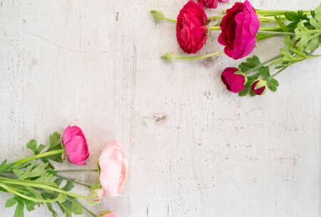 Flowers composition. Frame made of ranunculus flowers on white wooden background. Flat lay, top view, copy space