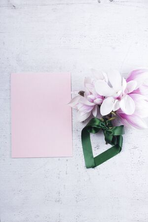 Magnolia flowers flat lay composition with copy space on pink paper