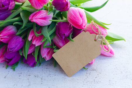 Violet fresh tulip flowers on white wooden background, copy space on paper card