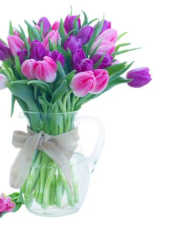 Pink and violet fresh tulip flowers in glass vase close up isolated on white background Zdjęcie Seryjne