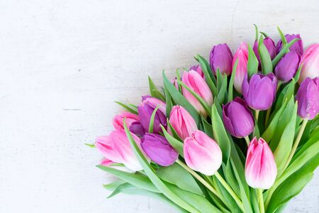 Pink and violet fresh tulip flowers on aged wooden background, top view with copy space Zdjęcie Seryjne