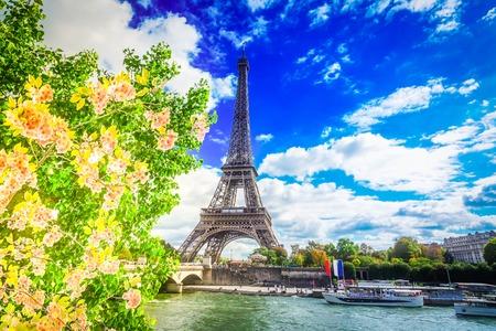 Eiffel Tour over Seine river with spring tree, Paris, France, retro toned