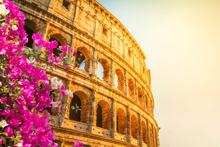 ruins of Colosseum at sunrise light in Rome with flowers, Italy