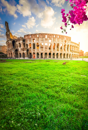 ruins of antique Colosseum in sunise light with flowers, Rome Italy Archivio Fotografico