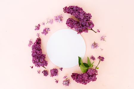 Fresh lilac flowers frame over pink background with copy space on round paper note, flat lay floral composition