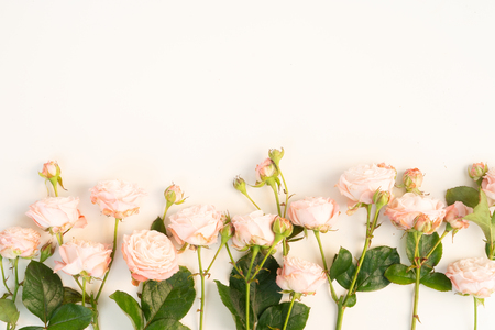 Flowers composition. Border made of rose flowers on white background. Flat lay, top view scene. 版權商用圖片