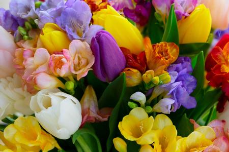 Bouquet di tulipani e fiori di fresie sfondo naturale da vicino Archivio Fotografico