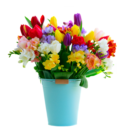 Bouquet of tulips and freesias flowers in blue bucket isolated on white background