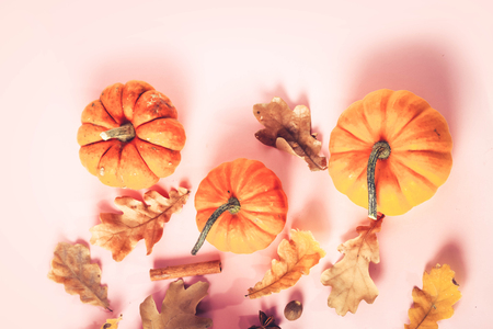 Pumpkins, fall leaves and spices on pink flat lay autumn background with copy space, retro toned