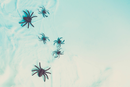 Halloween flat lay scene on blue background with spiders, retro toned
