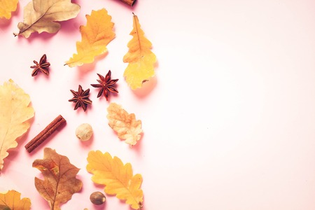 Fall leaves and spices on pink flat lay autumn background with copy space, retro toned