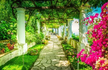 Beautiful pathway in garden, nature of Capri island, Italy, retro toned