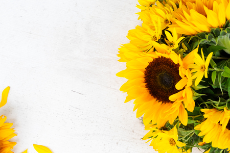 Sunflowers fresh yellow flowers and petals on white wooden table background Imagens