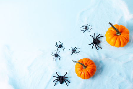 Orange halloween pumpkins and spiders on blue background flat lay scene with copy space