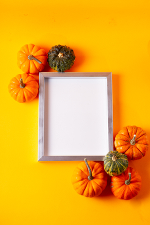Raw pumpkins on orange background with copy space on blank frame Stok Fotoğraf