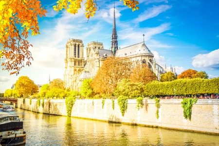 Notre Dame cathedral over the Seine river, Paris, France at fall