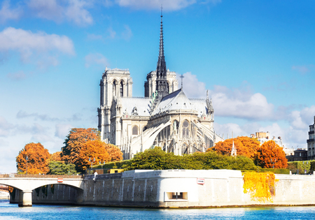 Notre Dame cathedral and Cite island over the Seine river at day, Paris, France at fall Фото со стока - 124707191