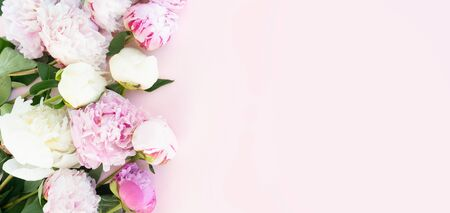 美丽的新鲜的桃红色和白色牡丹花关闭在桃红色桌上的边界与您的文本的拷贝空间,顶视图和平的房子背景