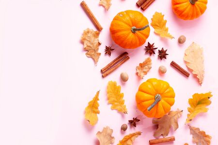 Pumpkins, fall leaves and spices on pink flat lay top view autumn background with copy space Stock Photo