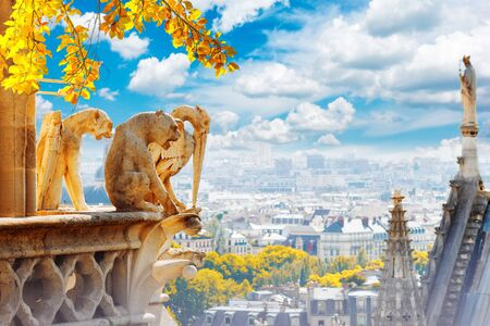 Gargoyles of Paris on Notre Dame Cathedral church and Paris cityscape from above at fall, France