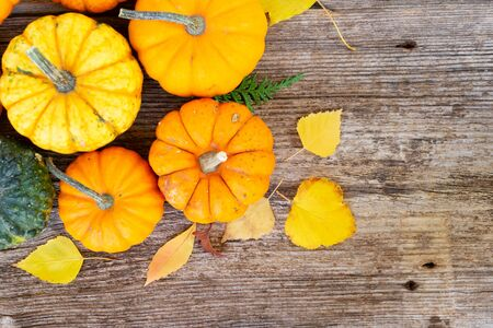 orange fall raw pumpkins on old wooden textured table, top view