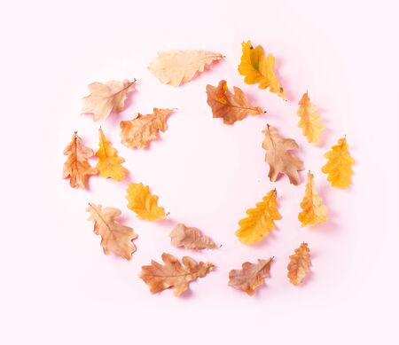 Fall leaves frame on pink flat lay autumn background