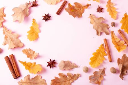 Fall leaves and spices on pink flat lay frame, autumn background