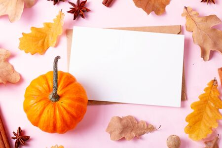 Pumpkins, fall leaves and spices on pink flat lay autumn background, copy space on white blank greeting card Imagens