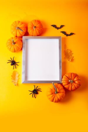 Raw pumpkins on orange background with blank frame with copy space