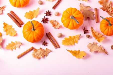 Pumpkins, fall leaves and spices on pink flat lay top view autumn background border with copy space Imagens
