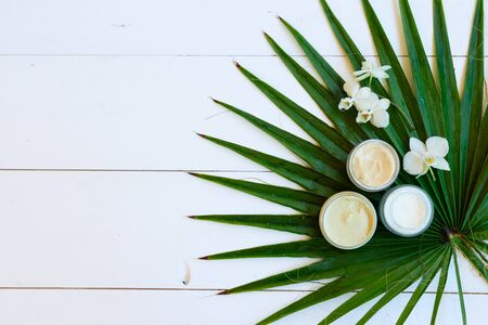 Coconut oil and natural cosmetics with green palm leaves on white wooden background with copy space 写真素材