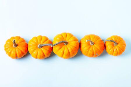 Row of orange pumpkins on blue background Imagens