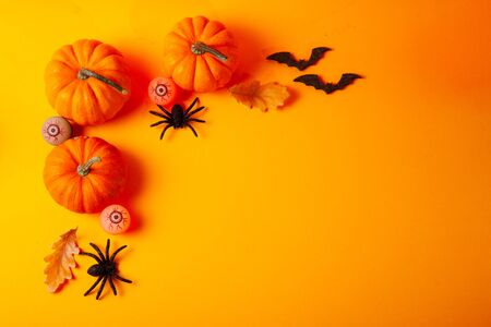 Halloween flat lay top view scene with pumpkins and spiders on orange background with copy space