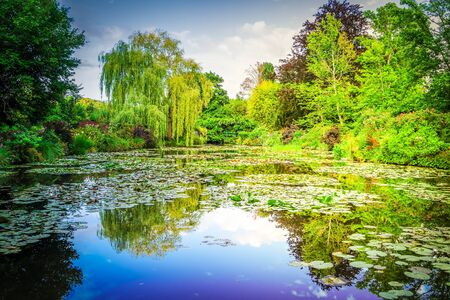 Pond with water lilies in Giverny at summer day, retro toned