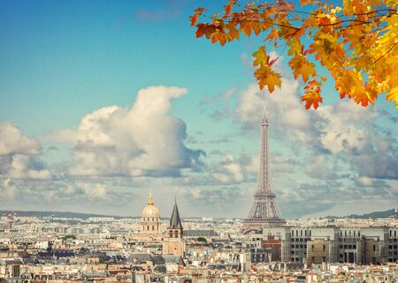 Paris city roofs with Eiffel Tower from above with branch of yellow fall maple tree, Paris France,