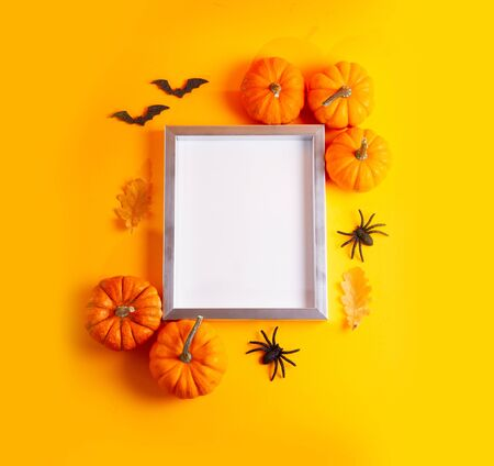 Raw pumpkins on bright orange  with blank frame with copy space
