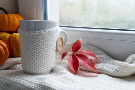 cup of fall coffee on windowsil, autumn view in background Stock Photo