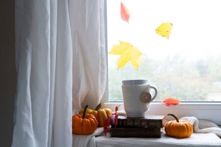 fall coffee on windowsil, autumn view with leaves in background