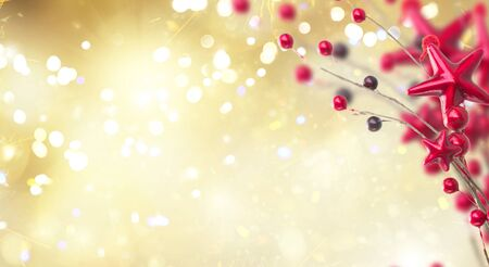 branch of christmas red stars and berries on golden bokeh background