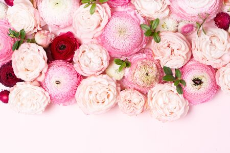 Flowers composition. Pattern made of roses and ranunculus flowers on pink background. Flat lay, top view Standard-Bild