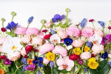 Composizione di fiori. Bordo fatto di rose, ranuncoli, viole del pensiero e fiori di orchidee su sfondo bianco. Scena piatta, vista dall'alto.