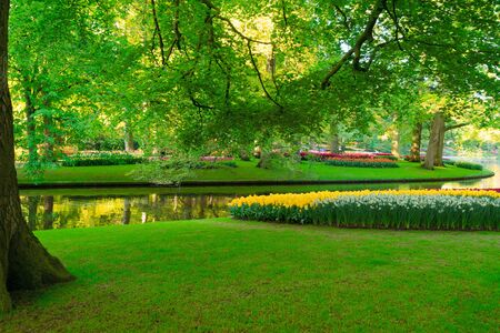 fresh spring garden with greenery - trees, fresh grass and river