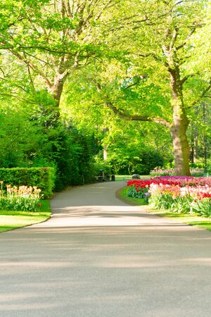 Colourful Flowerbeds and paved Path in an Spring Formal Garden