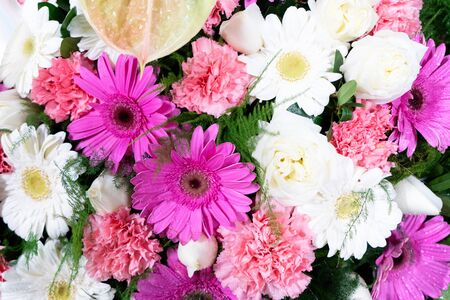 Flowers composition. Floral texture made of pink and white flowers on pink background. Flat lay, top view 免版税图像