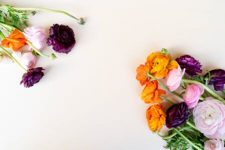 Flowers composition. Floral texture made of ranunculus flowers on pink background. Flat lay, top view 免版税图像