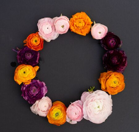 ranunculus flowers wreath on minimal black background 免版税图像