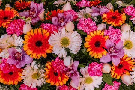 花の構成。新鮮なバラ、蘭、ハーブの花で作られた花の壁の質感、トーン