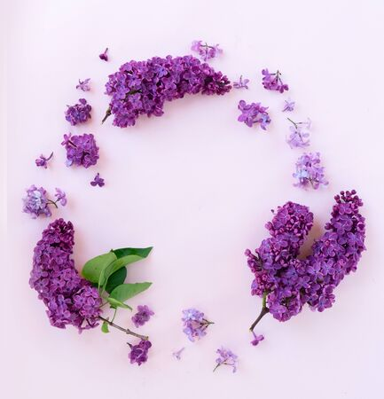 Fresh lilac flowers buds round frame over pink background with copy space, flat lay floral composition