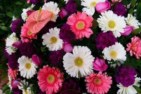 Flowers composition. Floral texture made of violet, pink and white flowers on pink background. Flat lay, top view